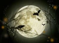halloween-g9a0e6437b_1280